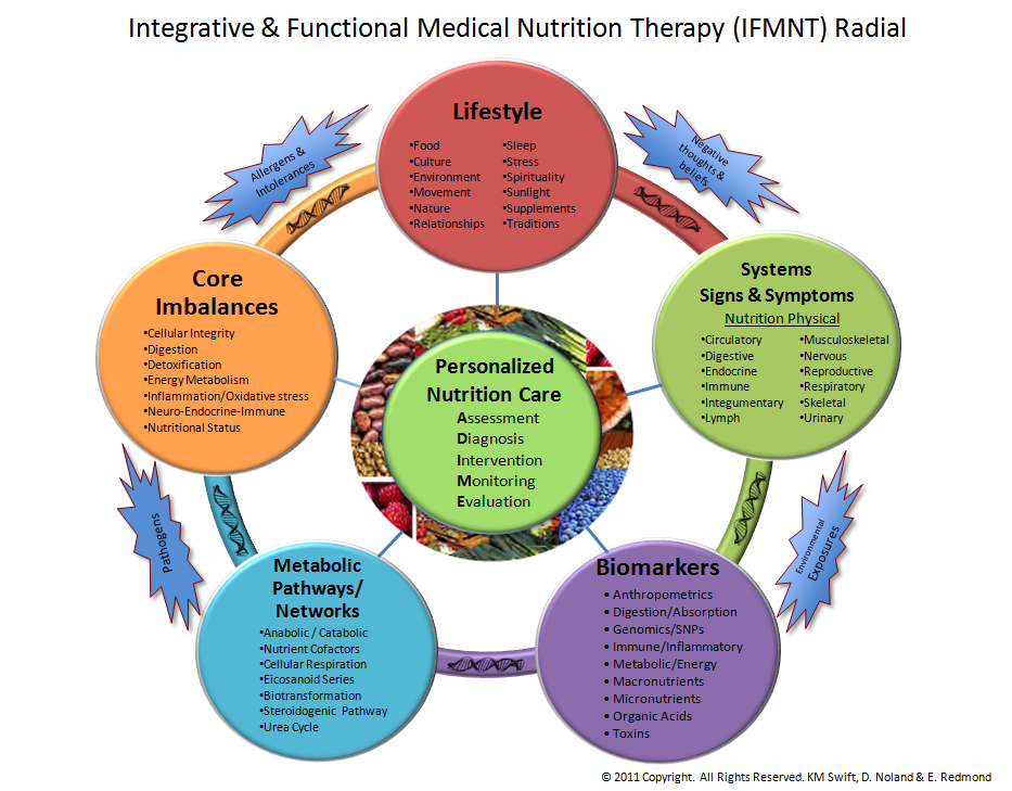 The circular architecture of the Functional Nutrition Radial allows for the evaluation of complex interactions and interrelationships. The Radial depicts that food is a determining factor in health and disease and is a source of biological information that influences, and is influenced by five key areas: lifestyle, systems, core imbalances, metabolic pathways, and biomarkers. Additional factors that can contribute to one's health are surrounding the radial.