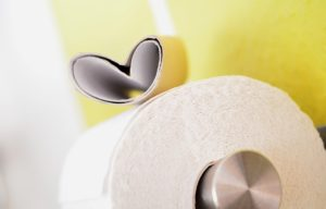 toilet-paper-627032_1920